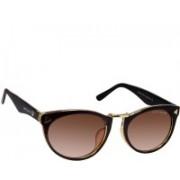 David Blake Cat-eye Sunglasses(Brown)