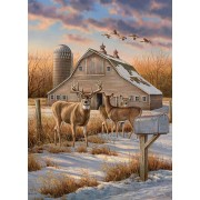 Puzzle Cobble Hill - Rosemary Millette: Rural Route, 1.000 piese (56072)