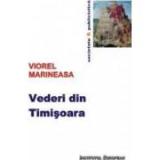 Vederi din Timisoara - Viorel Marineasa
