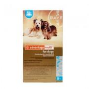 Advantage Multi (Advocate) Medium Dogs 9.1-20 Lbs (Aqua) 3 Doses