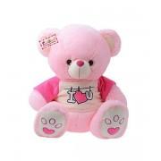 Cute 15 Inch Pink Teddy Bear wearing I Love You T-shirt