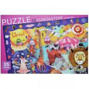 Puzzle recunoastere circul