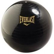 Minge aerobic Everlast 75 cm