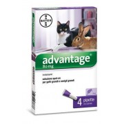 BAYER SpA (DIV.SANITA'ANIMALE) Advantage 80 4 Pipette 0,8ml Spot On