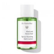 WALA Heilmittel GmbH Dr. Hauschka Kosmetik DR.HAUSCHKA Wind und Wetter Bad Sondergröße 30 ml