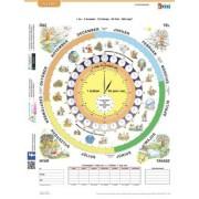 Tanulói munkalap, A4, STIEFEL Idő (VTM06)