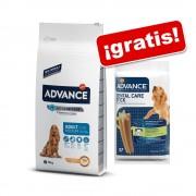 Affinity Advance 12 kg a 15 kg + Dental Care Stick 180 g ¡gratis! - Maxi Senior - 14 kg