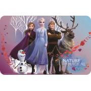 Disney Jégvarázs tányéralátét 3D
