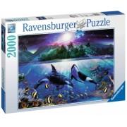 Puzzle Mister Sub Apa, 2000 Piese Ravensburger
