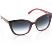 IDEE Cat-eye Sunglasses(Blue)