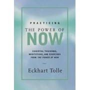 Practicing the Power of Now: Meditations, Exercises, and Core Teachings for Living the Liberated Life, Hardcover/Eckhart Tolle