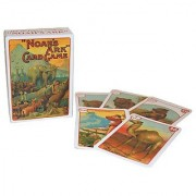Games Noahs Ark Card Game (NEW)