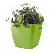 Önöntöző kaspó Cube maxi 45 cm, zöld