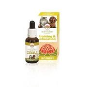 Green remedies spa Training & Education 30ml