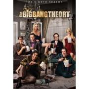 Warner Home Video The Big Bang Theory - Temporada 8