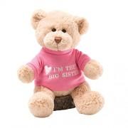 Gund I'm The Big Sister Message Bear Plush (12-inch)