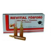 Revital Fosforo jalea real vitaminas