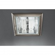 Philips Встраиваемый спот VETA recessed nickel 2x14W Massive 59796/17/10