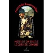 Secretele Bucurestilor vol.13 Misterele din spatele locurilor comune - Dan-Silviu Boerescu