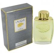 Lalique Pour Homme парфюмна вода за мъже 125 мл.