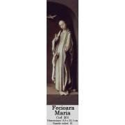 Fecioara Maria si Buna Vestire