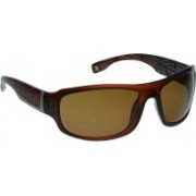 Animal Round Sunglasses(Brown)
