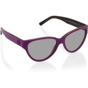 DKNY Cat-eye Sunglasses(Violet)