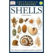 Shells: The Photographic Recognition Guide to Seashells of the World, Paperback