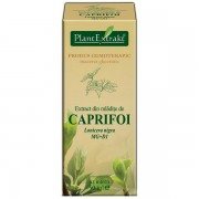 PlantExtract Extract caprifoi 50 ml
