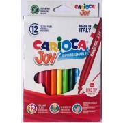 Carioca super lavabila, varf subtire 2.6mm, 12 culori/cutie, CARIOCA Joy