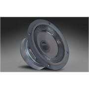 Difuzor Davis Acoustics 13 MP5GR