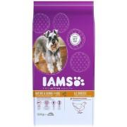 IAMS Dog Mature & Senior Chicken | Táp idős, idősödő macskáknak csirkehúsból 12kg
