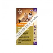 Advantage Multi (Advocate) Cats Over 10lbs (Purple) 12 Doses