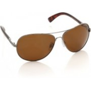 Polaroid Aviator Sunglasses(Brown)