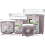 Colonial Candle Large- Driftwood Blossom