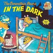 Berenstain Bears In The Dark by Jan Berenstain