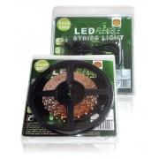LED TRAKE SET IP20 5m DC12V 4,8W/m ZELENA /SET 3528 205Z