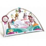 Centru Tiny Love de Joaca Tiny Princess Tales Gymini Deluxe