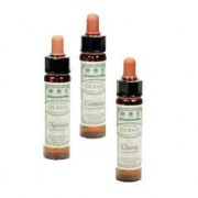 Bachs Blomstermedicin Dr. Bach Cerato Engholm - 10 ml