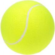Tahiro Green Tennis Balls - Pack Of 1