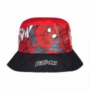 Spiderman Zomerhoedjes van Spiderman