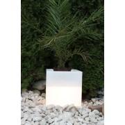 Pflanzkübel GlowTub quadratic 38x38x38cm beleuchtet 10620