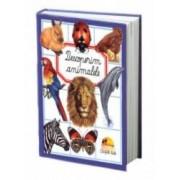 Descoperim animalele cartonata