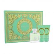 Versace Versense confezione regalo Eau de Toilette 50 ml + lozione per il corpo 50 ml + doccia gel 50 ml donna