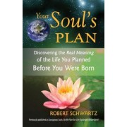 Your Soul's Plan: Discovering the Real Meaning of the Life You Planned Before You Were Born, Paperback