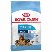 15kg Maxi Starter Mother & Babydog Royal Canin ração