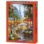 Puzzle Flori de primavara la Paris, 1000 piese