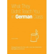 What They Didn't Teach You in German Class: Slang Phrases for the Cafe, Club, Bar, Bedroom, Ball Game and More, Hardcover
