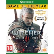 Bandai Namco Entertainment The Witcher 3: Wild Hunt - Game of the Year Edition