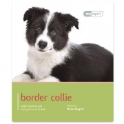 Dog Expert Border Collie Dog Expert Book